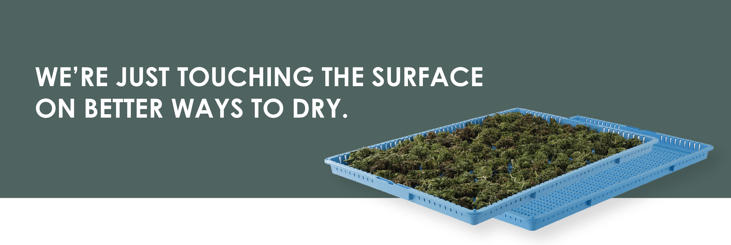 WE'RE JUST TOUCHING THE SURFACE ON BETTER WAYS TO DRY.