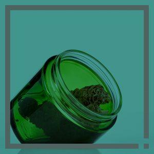 The Cannabis Innovation Collective Highlight on the Lean Jar by Cannasupplies