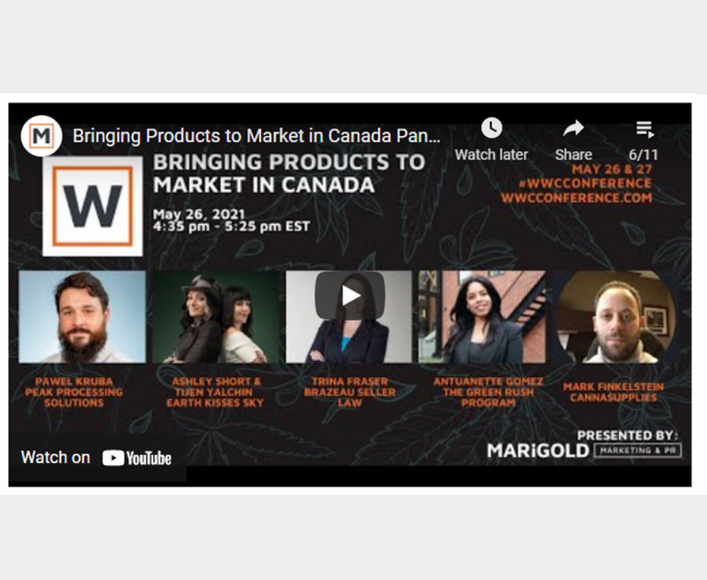Bringing Products to Market in Canada Panel (WWC Conference 2021)